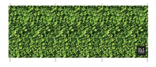 OlPro Laurel Hedge Windbreak