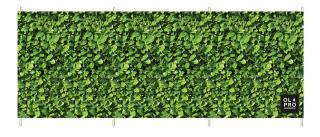 OlPro Laurel Hedge Windbreak